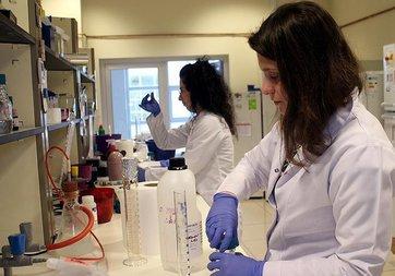 Biyoyazıcıyla üretilecek deri çipi kobaylığı bitirecek