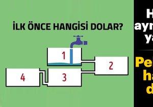 Sosyal medya bu zeka testini konuşuyor! Önce hangisi dolar?