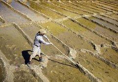Yer altı su kaynakları hızla tükeniyor