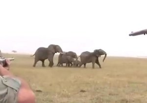 Fillerin intikamı acı oldu!