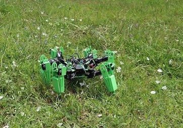 Öğrenciler, askeri operasyonlar için örümcek robot geliştirdi