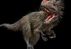 Bilinenin aksine dinozorlar tüylüydü ve kükremiyor, ötüyordu!