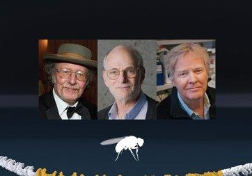 Nobel Tıp Ödülü'nü kazananlar belli oldu!