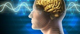 Bilim insanları hafızayı resme döktü!