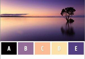 Zihin yaşınızı öğrenmek ister misiniz? (Renk testi)