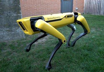 Boston Dynamics, her yıl 1000 robot köpek üretecek