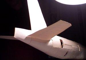 Karşınızda dünyanın en gerçekçi kağıt uçağı!