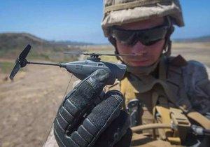 ABD ordusunun yeni üyesi: Siyah eşek arısı