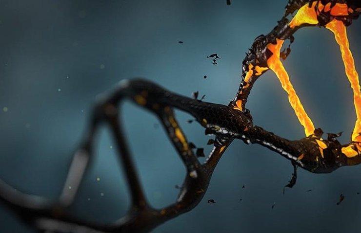 Kanser hücrelerinin DNA'ları 'altının çekim gücüne kapılıyor'