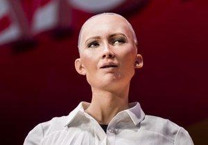 Robot Sophia'nın parçaları kayboldu! (Başbakanla yemeğe katılamadı)
