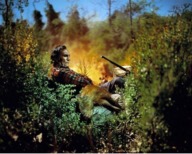 2011 Sony Dünya Fotoğraf Yarışmasından ödüllü fotoğraflar