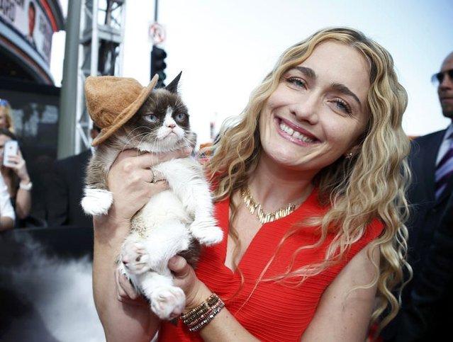 İnternet fenomeni Grumpy Cat, sahibini ihya etti
