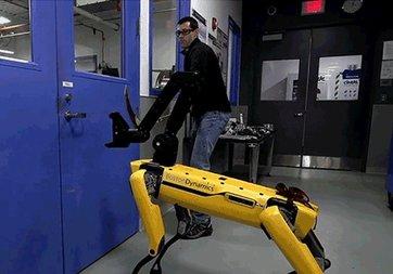 Boston Dynamics'in sarı robotuna işkence yaptılar