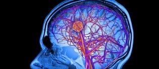 Beyin uzay yolculuğu esnasında değişime uğruyor!