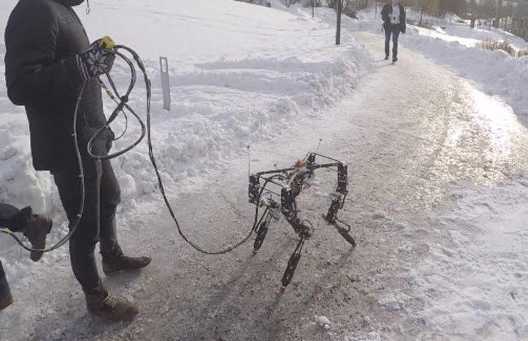 Kendi kendine yürümeyi öğrenen robot ile tanışın