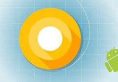 Android O nereden indirilir? Hangi cihazlarla uyumlu?