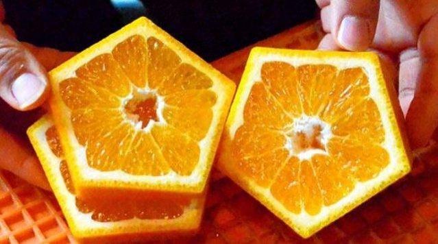 Japonlar kare karpuzdan sonra beşgen portakal üretti