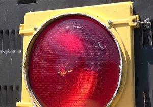 Trafik ışığının içinde ne var?